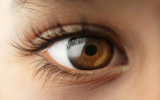 Что такое блефарит: причины, симптомы и виды заболевания век