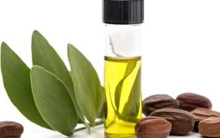 Эффективность использования масла жожоба для красоты ресниц