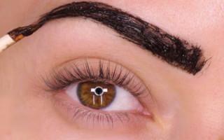 Как правильно окрашивать брови: применение и обзор красок