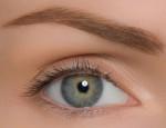 Какому типажу подойдут брови коричневых оттенков: как правильно подобрать цвет