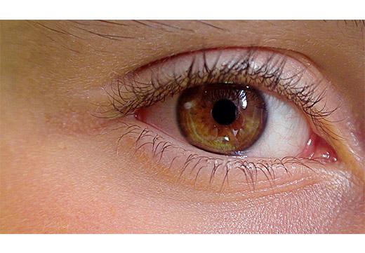 карий глаз