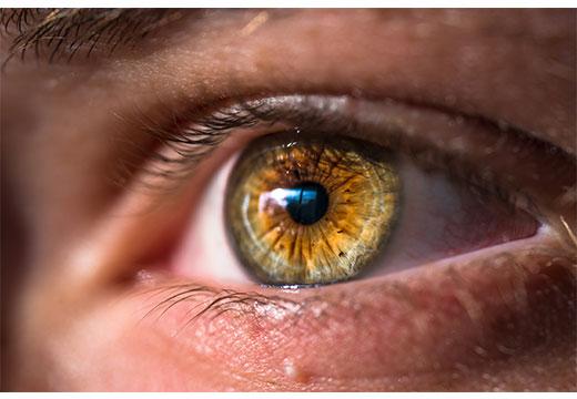 зеленый глаз
