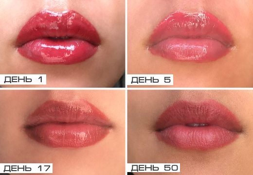 этапы заживления перманента губ